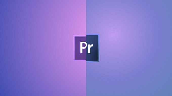 how to make some parts of video blurry premiere pro